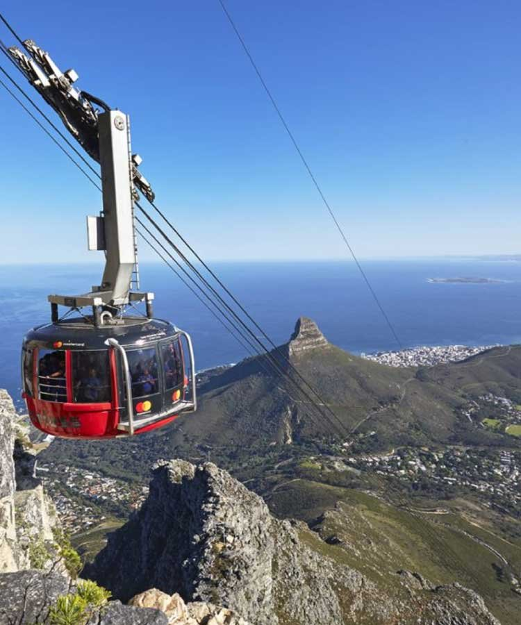 Table Mountain & Half Day City Tour